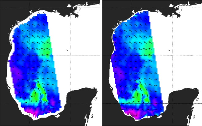This image compares the wind vectors from the OSI SAF Operational 12.5 km ASCAT data set (left panel) with wind vectors from the OSI SAF Coastal 12.5 km ASCAT data set (right panel) in the western Gulf of Mexico region on the morning (ascending node) of 6 September 2010. Tropical Storm Hermine can be seen just west of the Yucatan Peninsula.