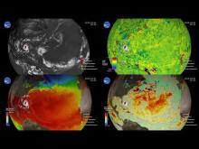 Embedded thumbnail for Ocean Response to 2019 Atlantic Hurricane Season